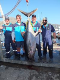 Day 2 - two oceans marine tuna derby 2018