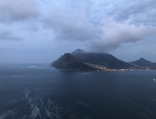 Keen anglers screaming out of Hout Bay for day 2