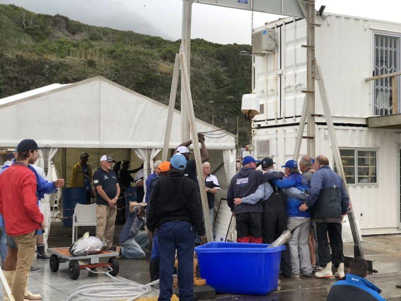 Tuna fishing action - tuna masters